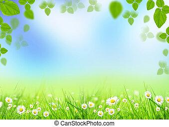 Spring background
