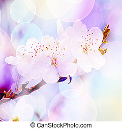 spring background, tender blur colors and bokeh