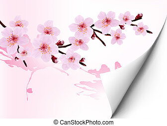 Spring background with a blossoming sakura branch. Vector illustration.