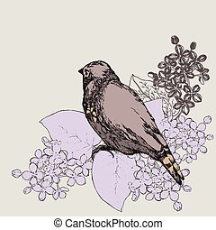 Spring background with bird and a lilac, hand-drawing. Vector il