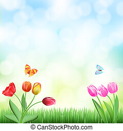 spring background with grass, tulips and butterflies
