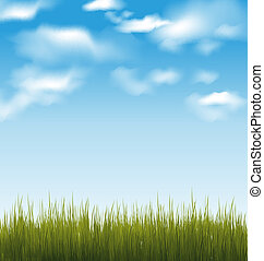 Spring background with green grass and sky