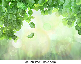 Spring Background With Leaves and bokeh effect