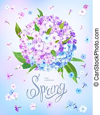 Beautiful floral background with blooming flowers of pink, lilac and light blue phloxes and green leaves. Inscription Spring on pastel sky blue background. Vector illustration