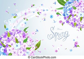 Spring background with Phlox