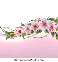 Spring header with pink cherry flowers, buds and copy space. Vector illustration