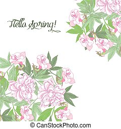 Spring background with pink flowers pink peonies