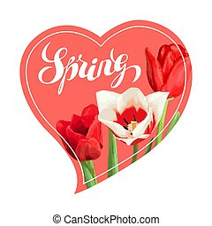Spring background with red and white tulips. Beautiful realistic flowers, buds and leaves