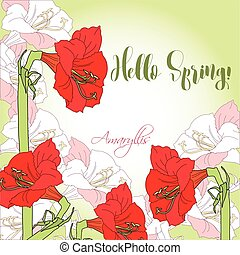 Spring background with red pink amaryllis. Vector...