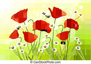 Spring background with red poppy