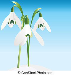 Spring background with snowdrop