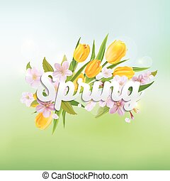 Spring Background - with Tulips and Cherry Tree Flowers - in vector