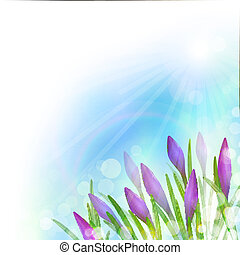 Spring Background with Violet Flowers. Vector illustration,...