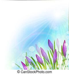 Spring Background with Violet Flowers. Vector illustration, eps10, editable.