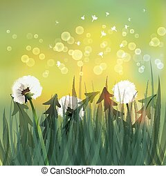 Spring background with white dandelions.