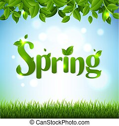 Spring Banner With Green Branches And Grass