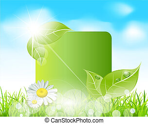spring banner with  leaves and grass against the blue sky