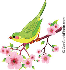 Spring bird - Cute bird sitting on blossom tree branch. ...
