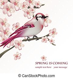 Spring bird on blossom cherry tree branch Vector illustration. Beautiful Postcard for Mother's Day, Birthday, Anniversary. Pastel pink colors. Vector illustration