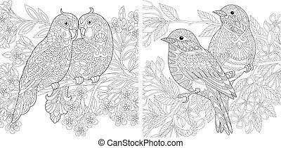 Spring birds in love