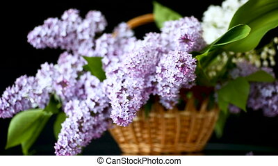 spring blooming bouquet of lilac in a basket on a black...