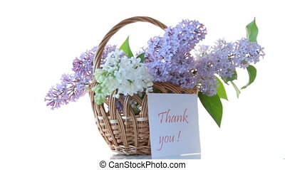 spring blooming bouquet of lilac isolated on white...