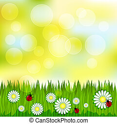 Spring blurred pattern with grass and chamomile ladybugs