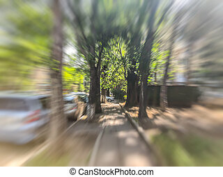 Spring blurred trees in the street. Abstract motion blur effect.