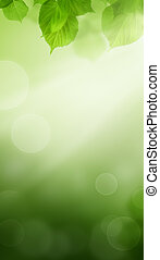 Spring Bokeh Background with Green Leaves