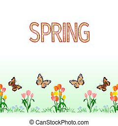 Spring border seamless background tulips with butterfly vector
