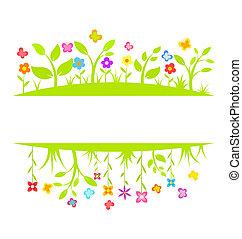 Spring border
