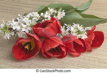 Spring bouquet from tulip and flower to cherries
