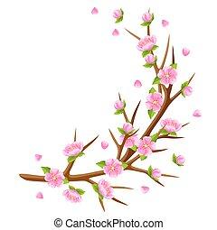 Spring branch of tree and sakura flowers. Seasonal illustration