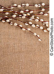 Spring catkins on the hemp bag