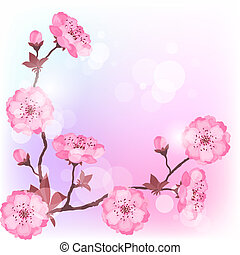 Spring cherry flowers natural background.