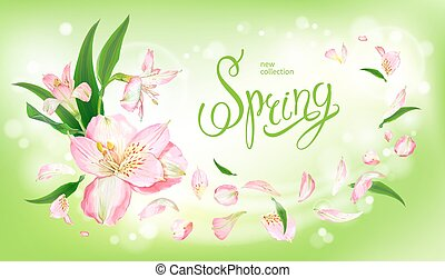 Spring collection background