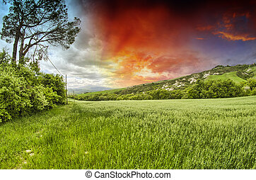Spring colors of Tuscany - Meadows and Hills at sunset