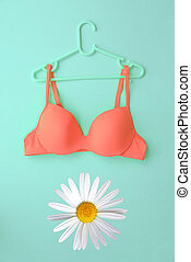 Spring concept, Bra on hanger with white daisy flower on blue background.