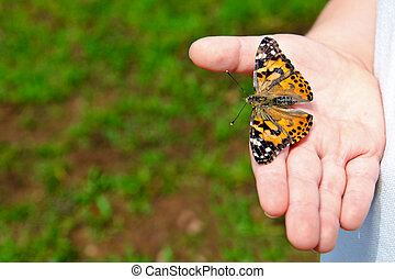Spring concept with close up of child holding a painted lady...