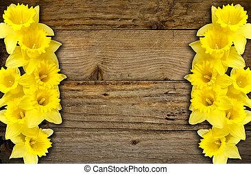 Spring daffodils border or frame background