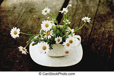 Spring daisies on white cup. old style image photo.