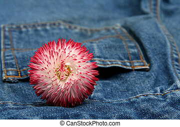 Blue jeans trousers and big pink daisy