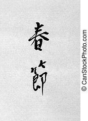 Spring Festival Chinese Calligraphy