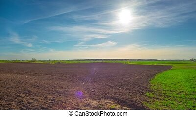 Spring field and the sun, pan