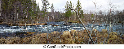 Spring flood in the forest Panorama