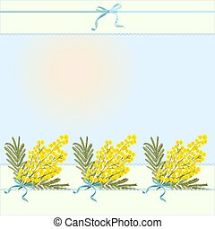 Spring floral abstract template background with mimosa acacia flower and place for text