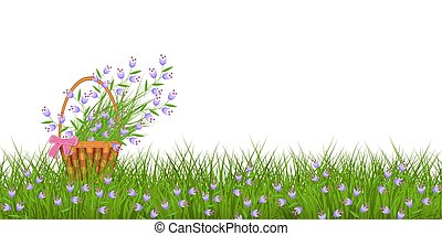 Spring floral border with little blue wild flowers on fresh green grass and bouquet in wicker basket.