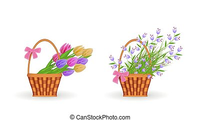 Spring floral bouquets in wicker basket set with gathered fresh tulips and blue wild flowers with green leaves.