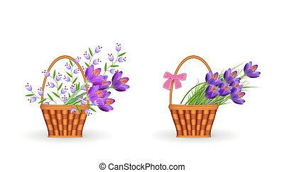 Spring floral bouquets in wicker baskets set with gathered fresh crocuses and blue wild flowers with green leaves.