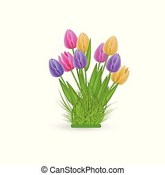 Spring floral tulip bundle with fresh colorful flowers on green herb isolated on white background.